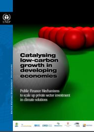 catalysing-low-carbon-growth-in-developing-ecomomies
