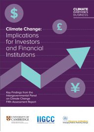 climate-change_implications-for-investors-and-financial-instituions