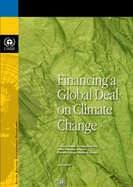financing-a-global-deal-in-climate-change