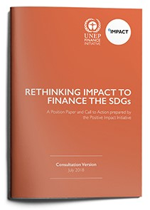 Rethinking Impact to Finance the SDGs - Consultation Version