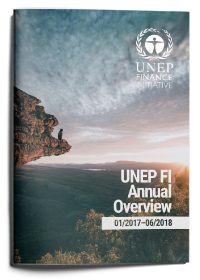 UNEP FI Overview January 2017 - June 2018