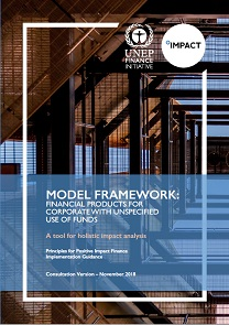 Model Framework for Financial Products for Corporates with unspecified use of funds