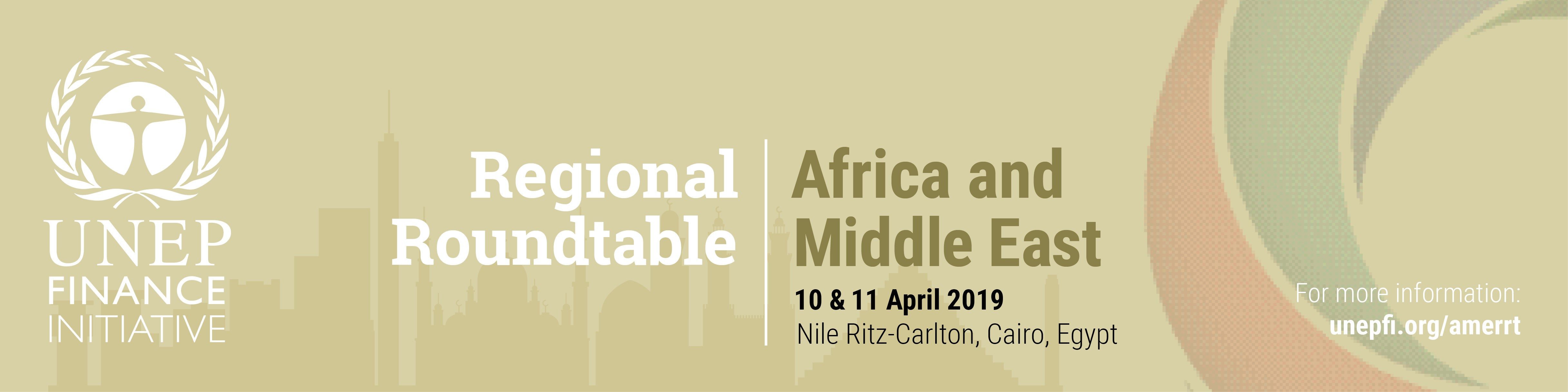 Regional Roundtable for Sustainable Finance in Africa and