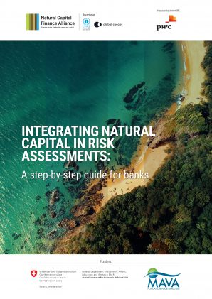 Integrating Natural Capital in Risk Assessments