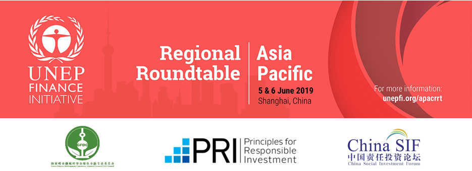 Regional Roundtable on Sustainable Finance in Asia Pacific ...