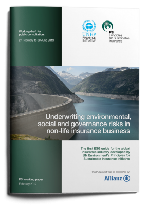 Underwriting environmental, social and governance risks in non-life insurance business