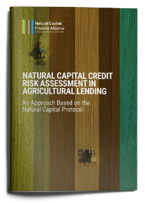 Natural Capital Credit Risk Assessment in Agricultural Lending