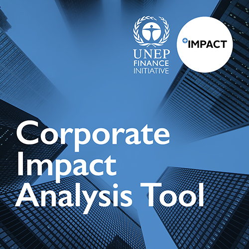 UNEP FI Corporate Impact Analysis Tool
