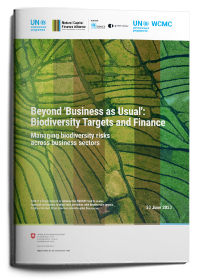 Beyond 'Business as Usual': Biodiversity Targets and Finance