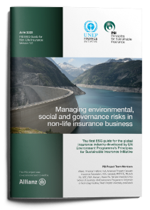 Managing environmental, social and governance risks in non-life insurance business