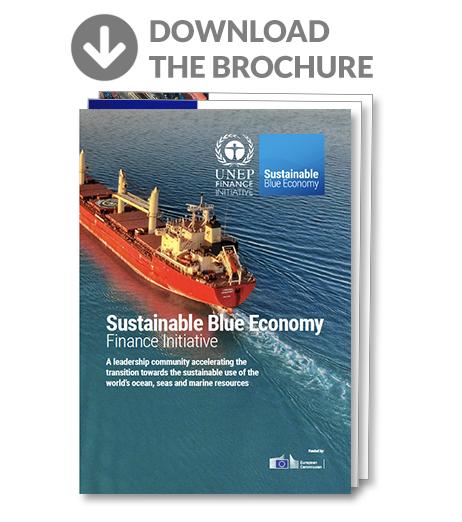 Sustainable blue economy finance initiative