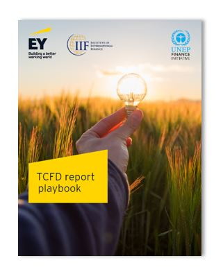 "UNEP FI and IIF's ""TCFD Report Playbook"""