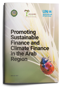 Promoting Sustainable Finance and Climate Finance in the Arab Region