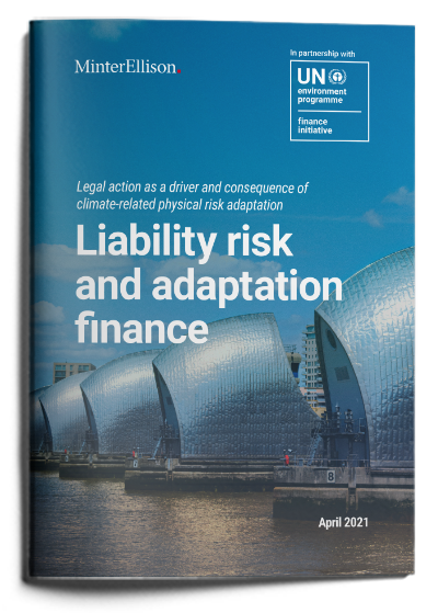 Liability Risk and Adaptation Finance