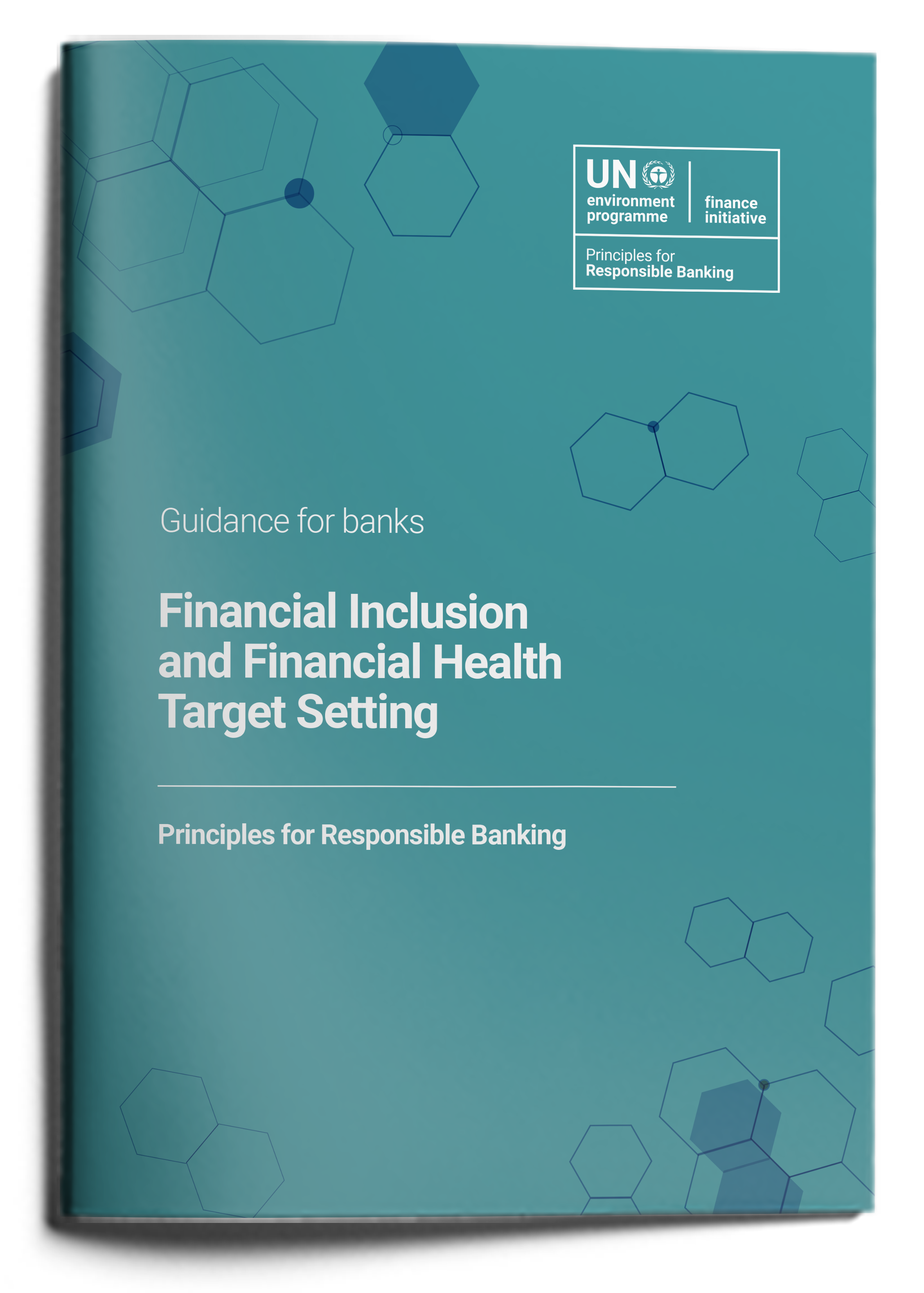 Guidance on Financial Health & Inclusion Target Setting