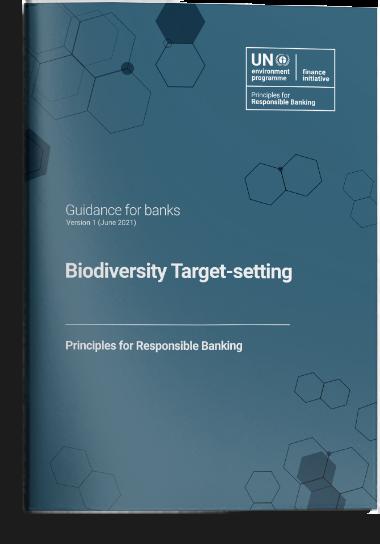 Guidance on Biodiversity Target-setting