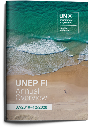 UNEP FI Annual Overview