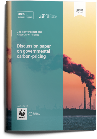 Discussion paper on governmental carbon pricing