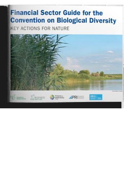 New nature-positive finance guidance