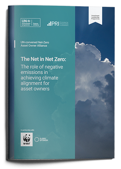The Net in Net Zero: The role of negative emissions in achieving climate alignment for asset owners