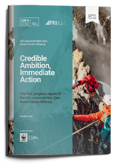 Credible Ambition, Immediate Action